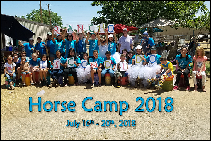 camp_2018_group_small